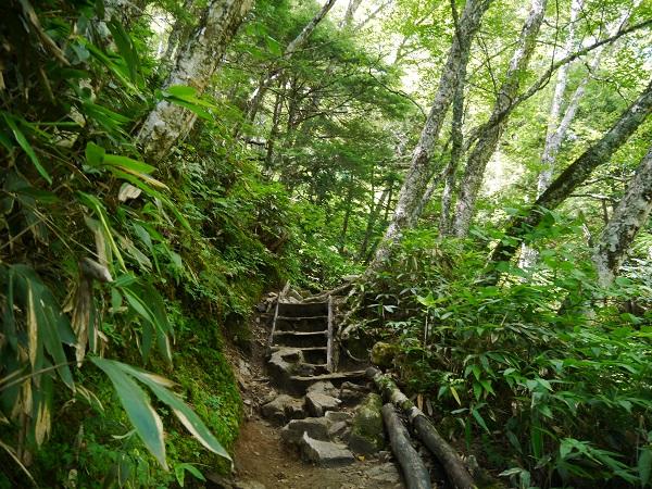 燕岳登山道