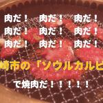 タレが置いていない!?岡崎市ソウルカルビの手もみダレの肉がうま過ぎる!
