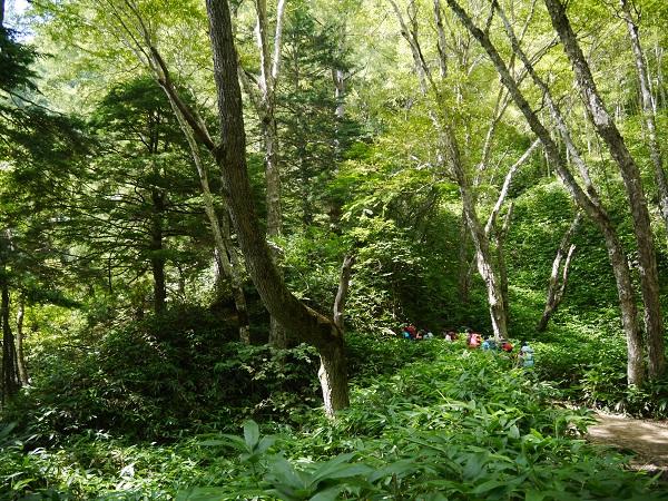 燕岳登山道3