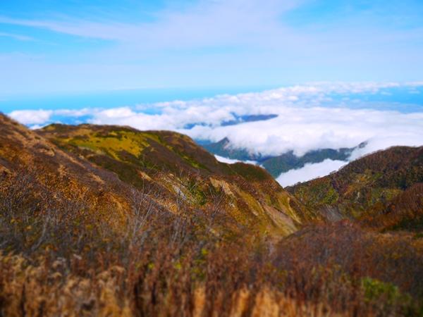 日本列島に沿って雲が連なってる