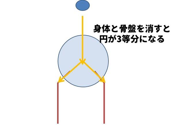 頚体角が120°になる理由4