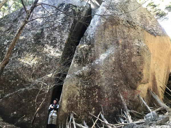 岩にはっててみた