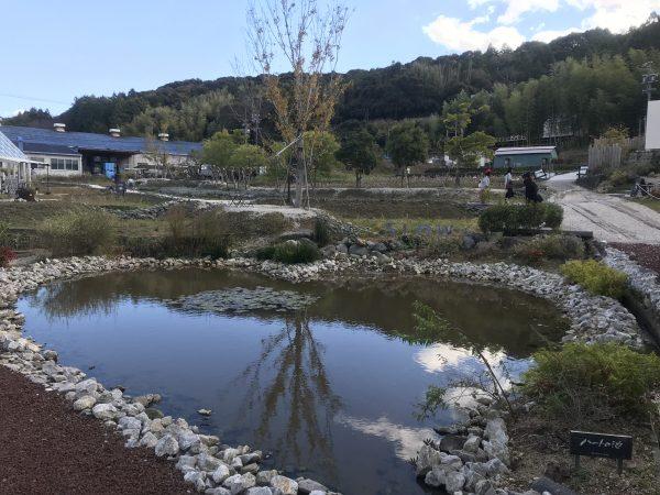 ハートの池