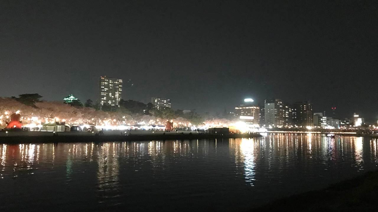 岡崎市の夜ざくら