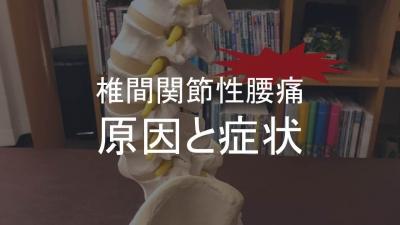 椎間関節性腰痛アイキャッチ