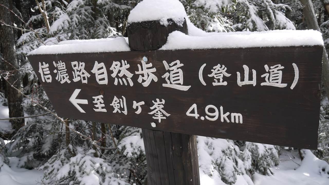 白駒池までの道