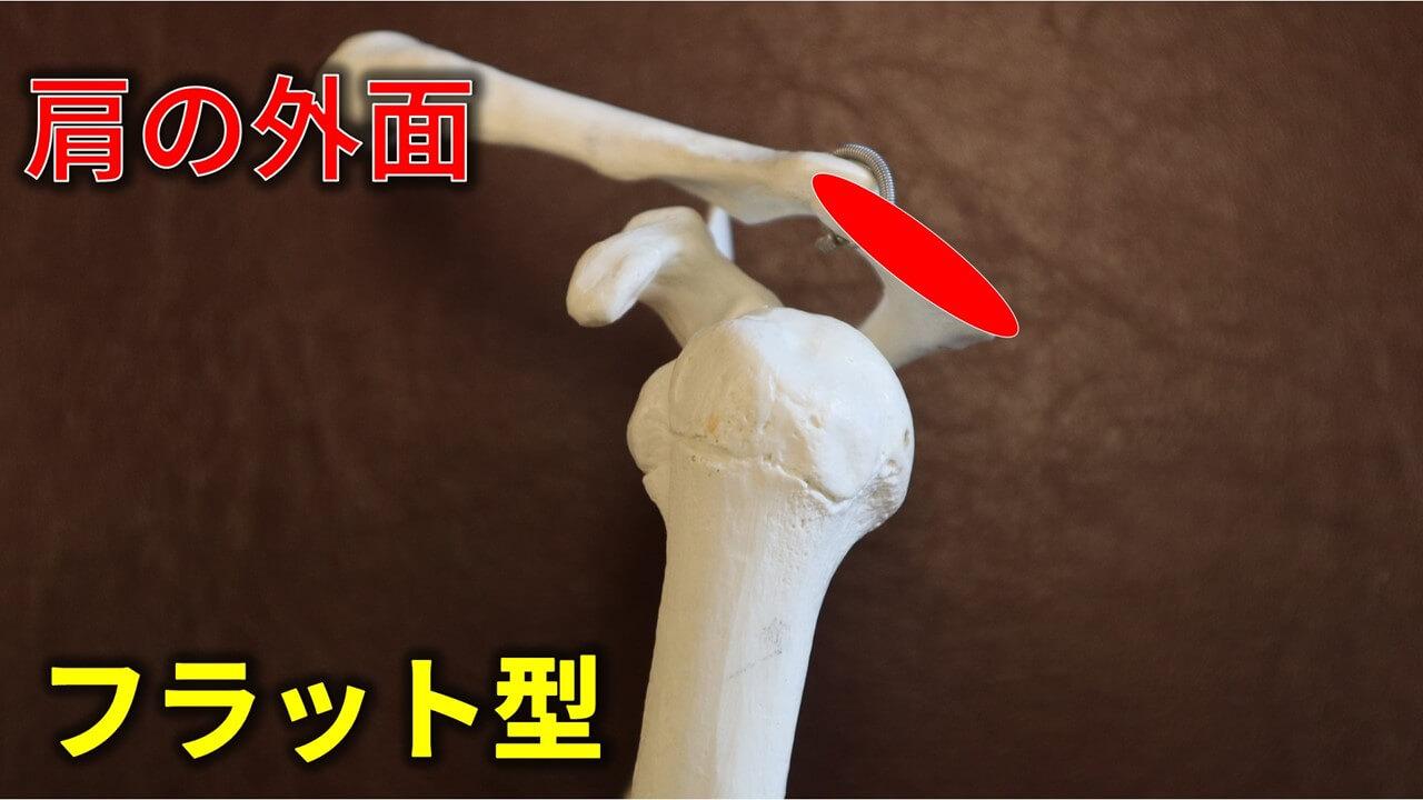 肩峰のフラット型
