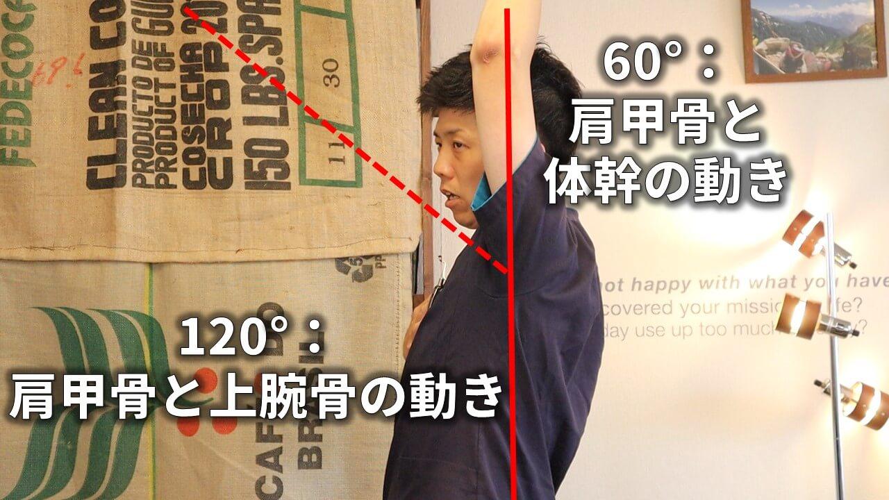 肩の可動域180°の内訳
