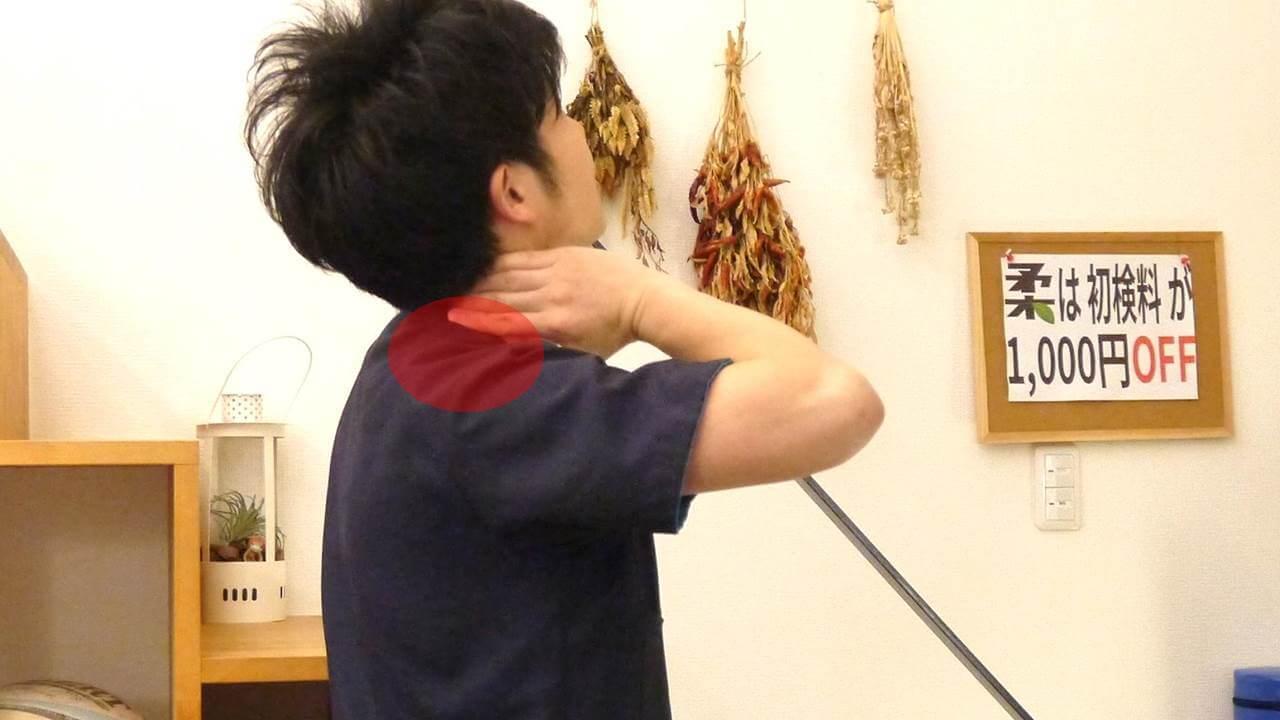 首の付根の部位
