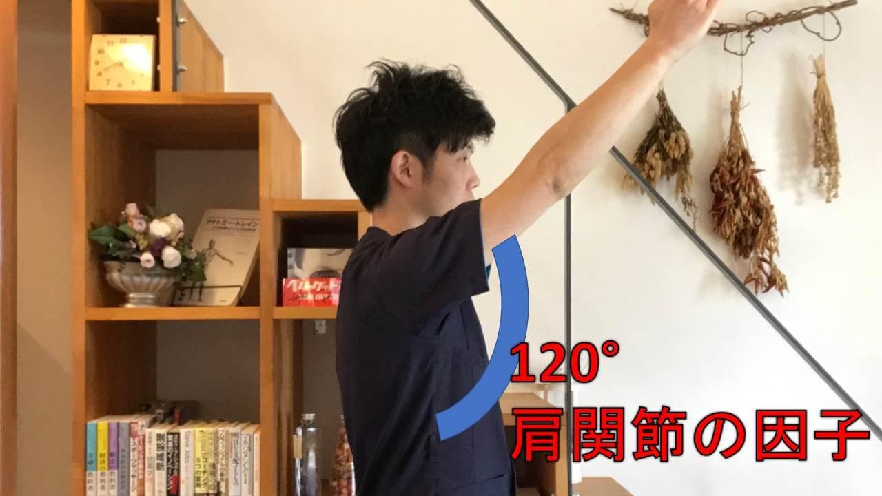 120°が肩関節の動き