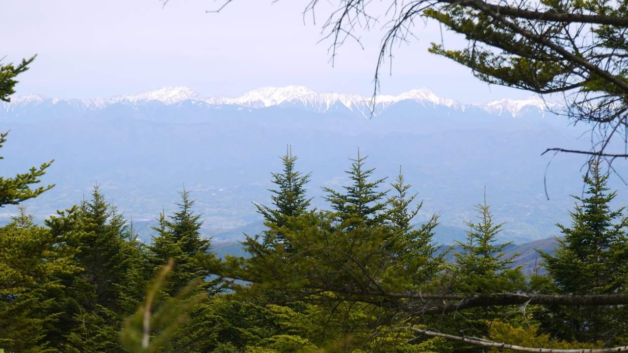 恵那山からアルプス