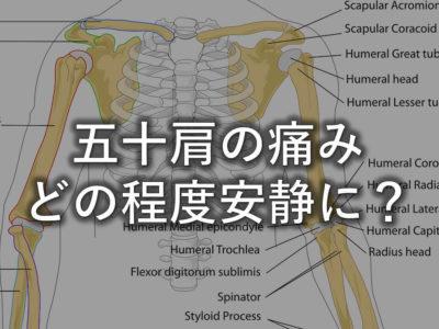 五十肩の痛みはどの程度安静に?アイキャッチ