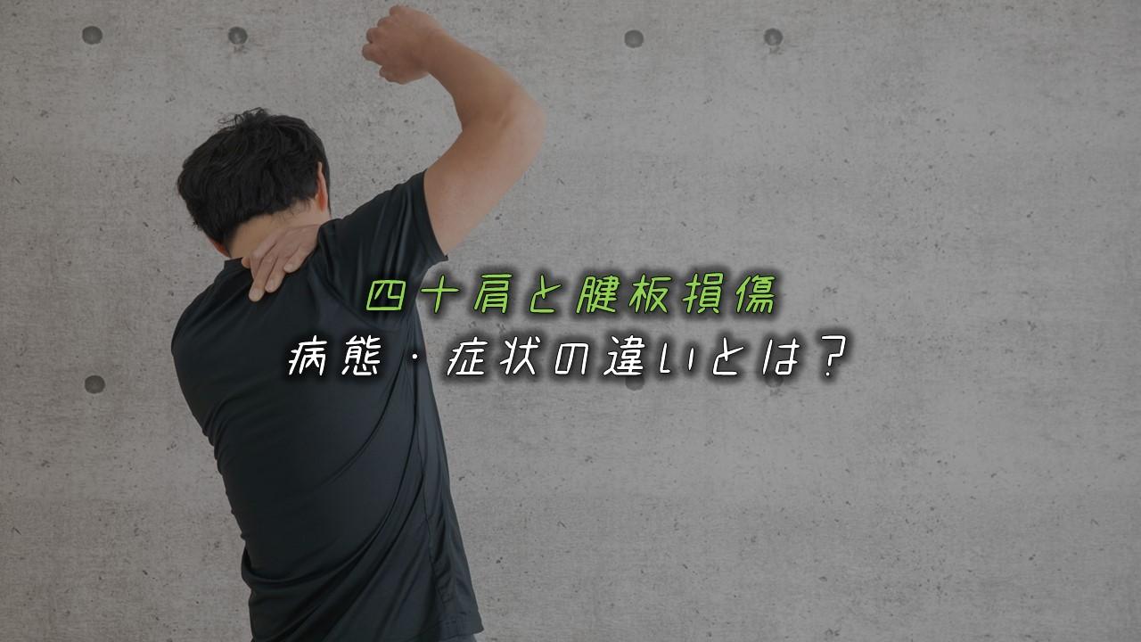 四十肩と腱板損傷の違いを比較