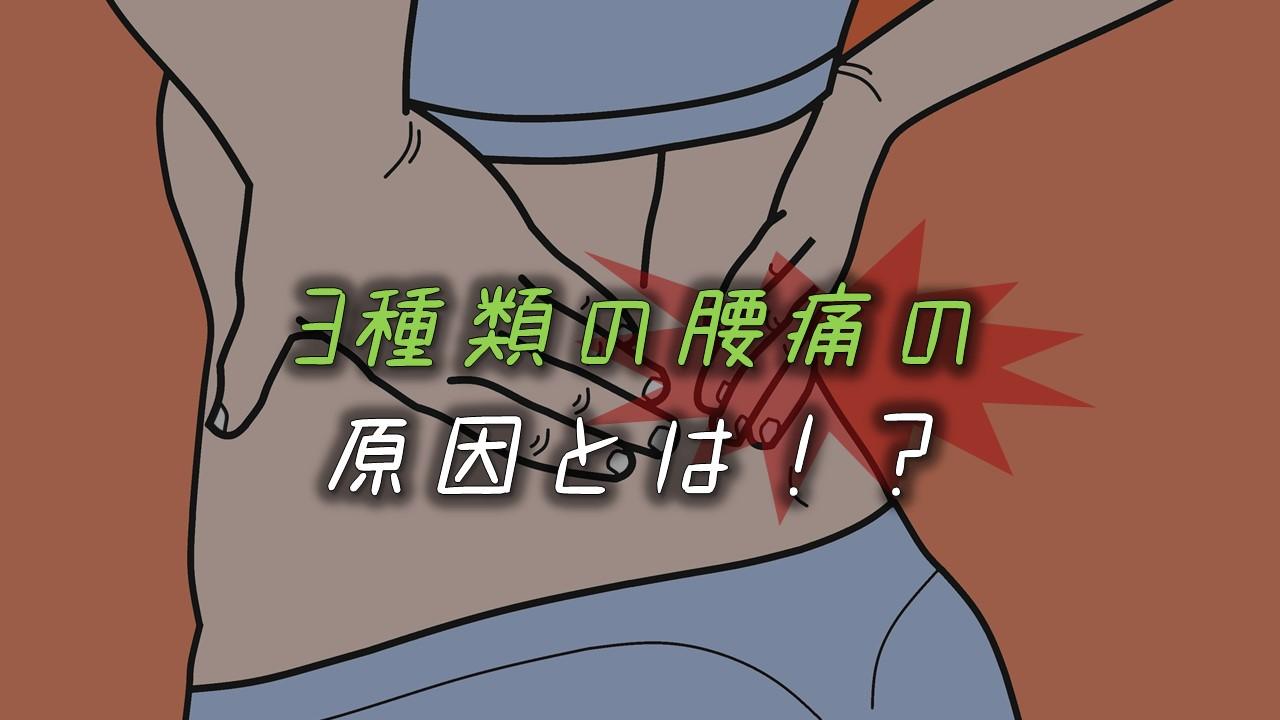 腰痛原因アイキャッチ