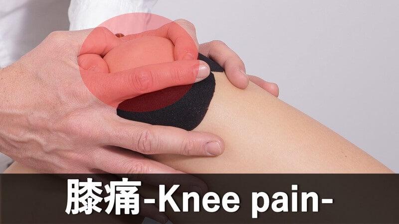 膝の痛みカテゴリー